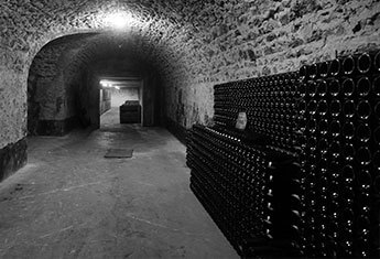 Cave du Champagne Paul Launois
